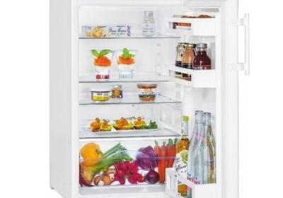 monoklimatická lednice