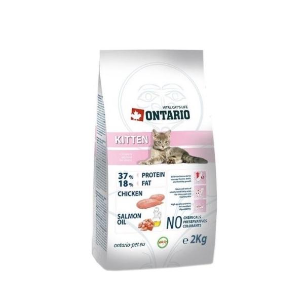 Ontario Kitten recenze a test